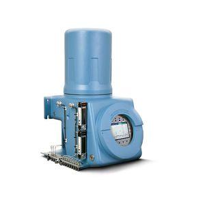 gas chromatograph / process / FID