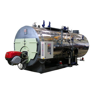 steam boiler / fuel oil / natural gas / biogas