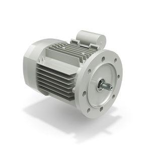 single-phase motor