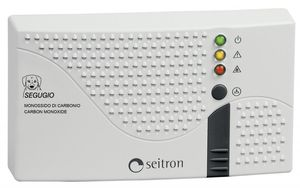 carbon monoxide leak detector