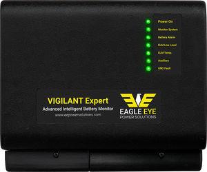 voltage monitoring system