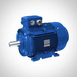 IE4 motor