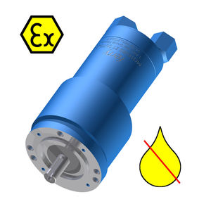 non-lubricated air motor