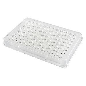 96-well microplate