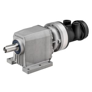 vane air motor / helical / compact