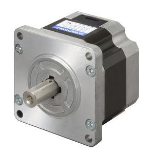 DC motor / two-phase stepper / 60 V / bipolar