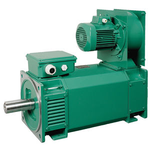variable-speed motor