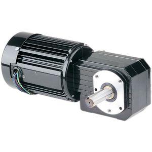AC gear-motor