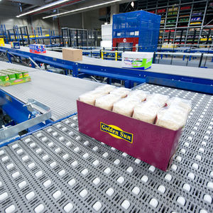 belt conveyor / for the food industry / for boxes / case