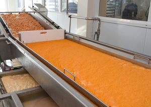 shrimp processing line
