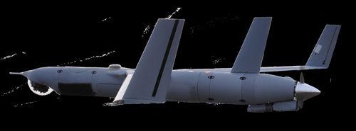 fixed-wing UAV / civilian