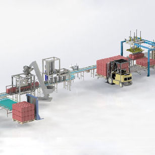 multi-product fully packaging line