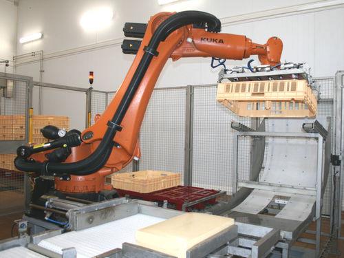 robotic palletizer and depalletizer
