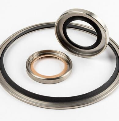 lip seal / polymer / shaft