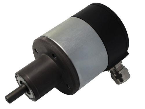 Hall effect rotary encoder / digital / flange / IP66