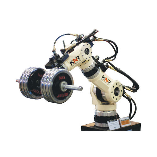 articulated robot / handling / floor-mounted