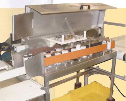 trout filleting machine / for salmon