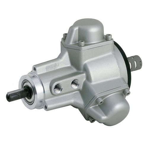 rotary vane air motor / radial piston