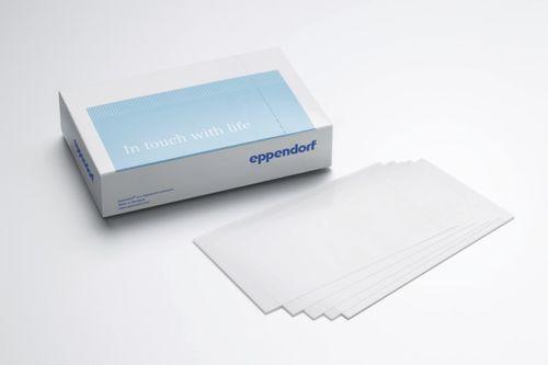 adhesive film
