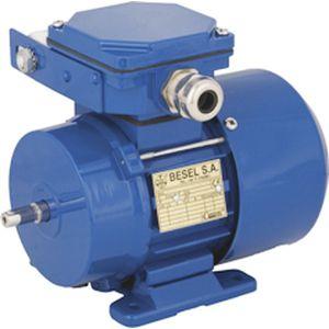 single-phase motor / induction / 220 V / 2-pole