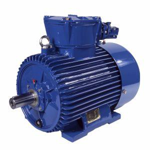 three-phase motor - Cantoni Motor