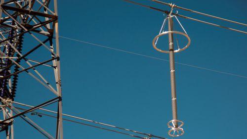 electrical line surge arrester