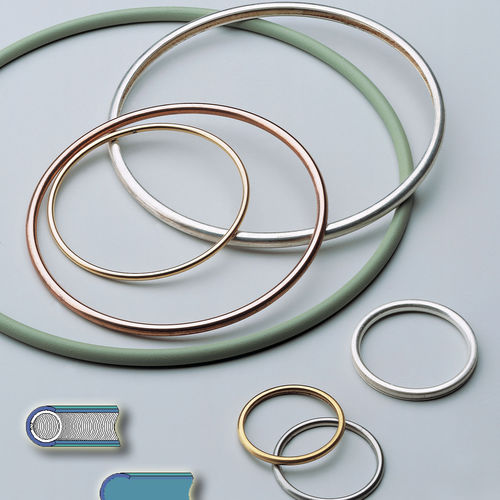 lipped seal / spring-loaded / C-ring / metal