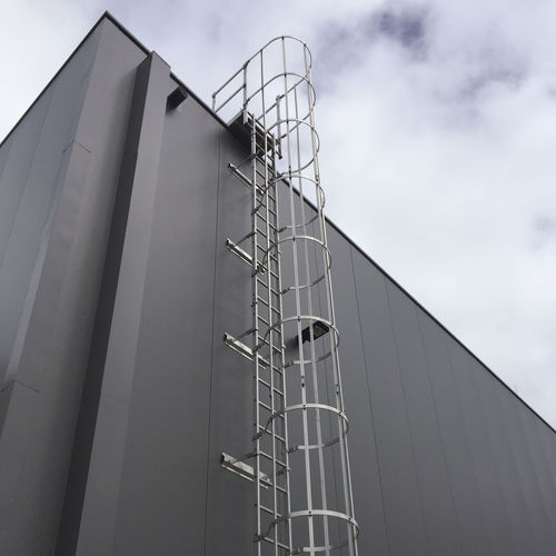 ladder with safety cage