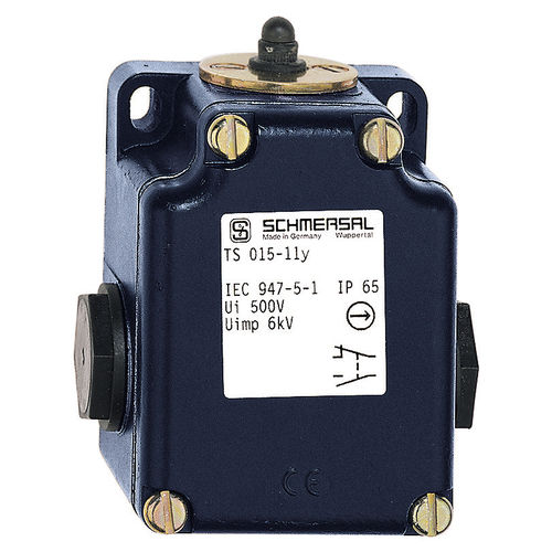 IP65 position switch / stainless steel / with plunger