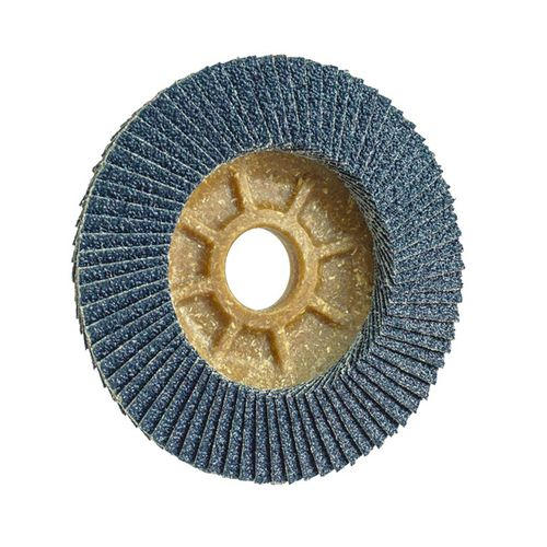stainless steel flap disc