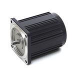 single-phase torque motor