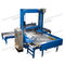 low level infeed palletizer