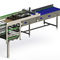 depalletizer for the food and beverage industry