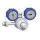 gas pressure regulator / membrane / spring / single-stage