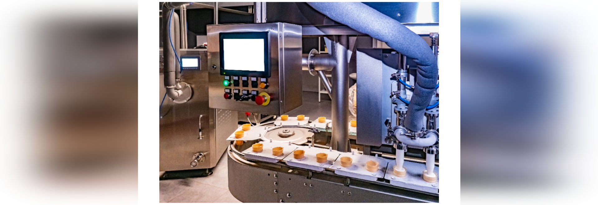 Benefits of Machine Vision Technology for Food Manufacturers