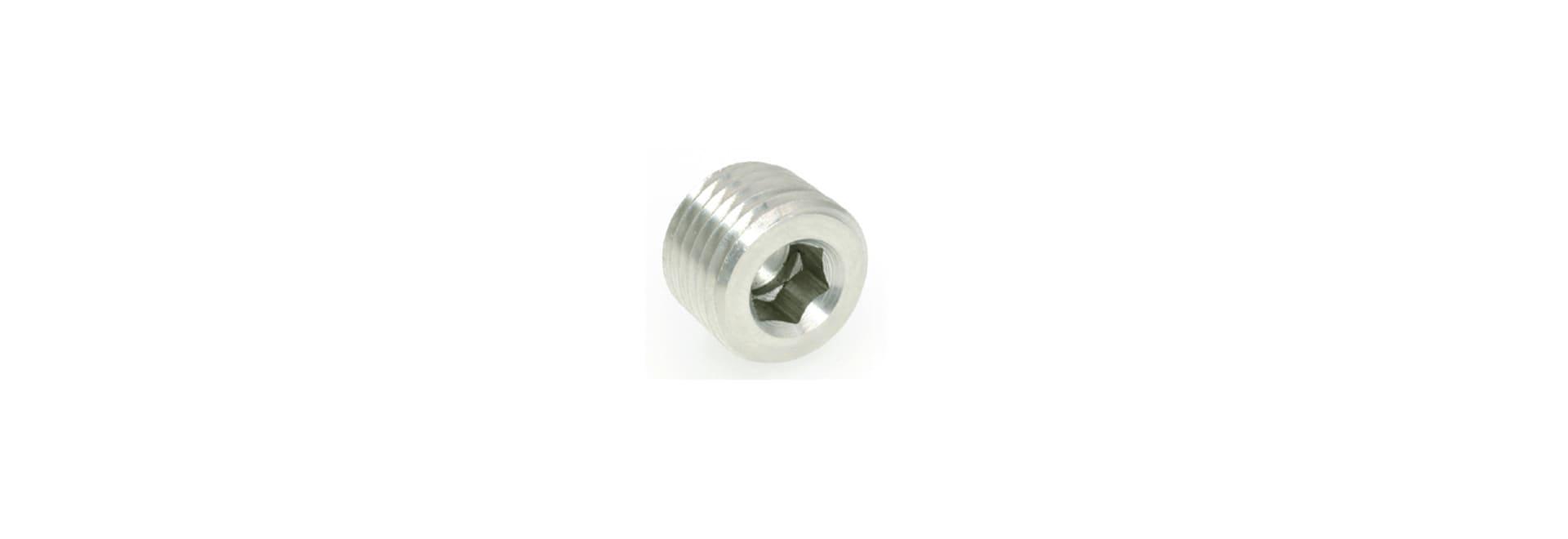 Brass Pipe Fitting Inner Hexagon Plug