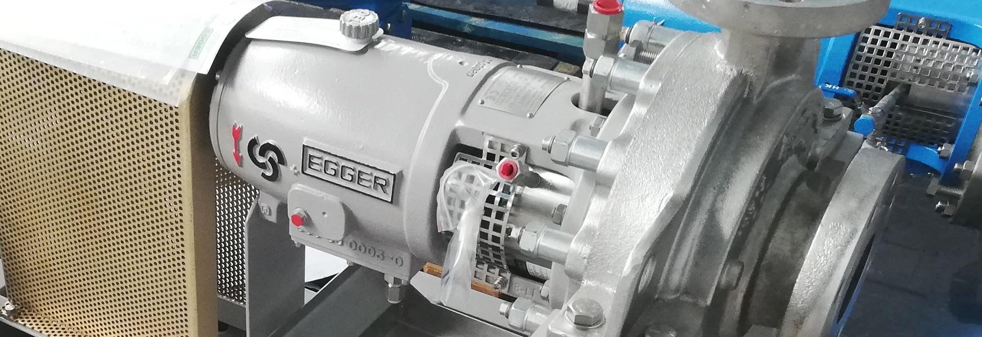 Egger Reactor pump for Eastman, USA