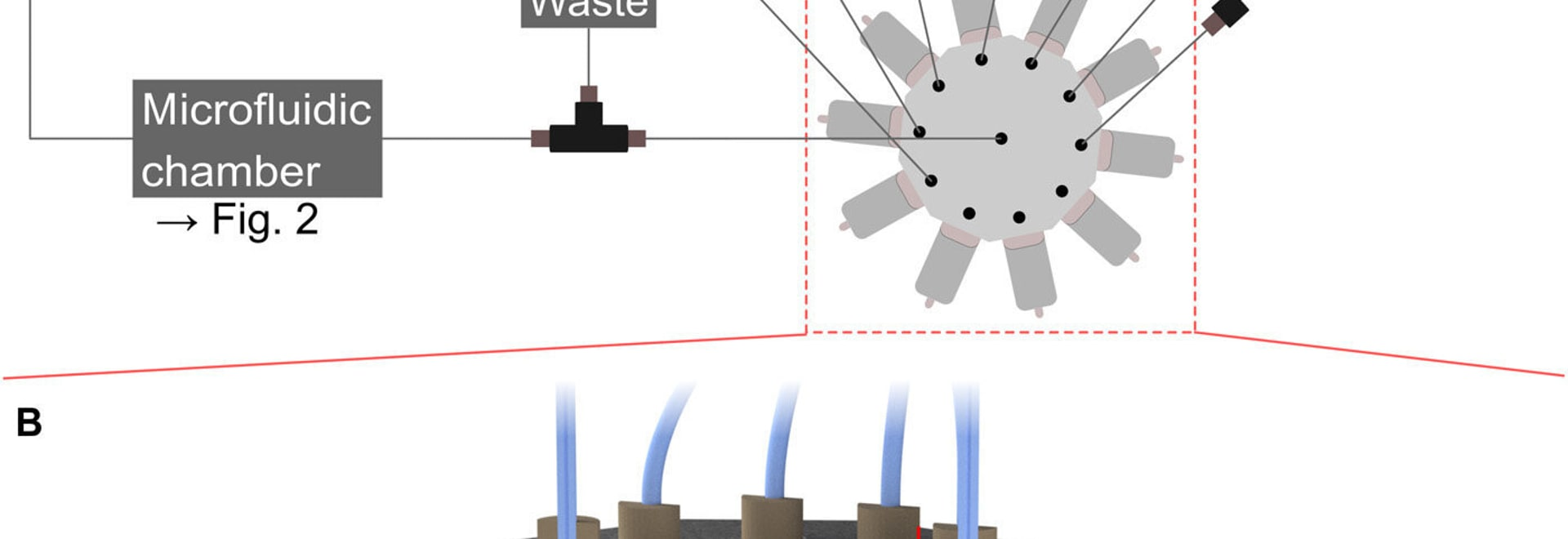 Researchers integrate microfluidic system into DLW 3D printer for multimaterial nanoprinting