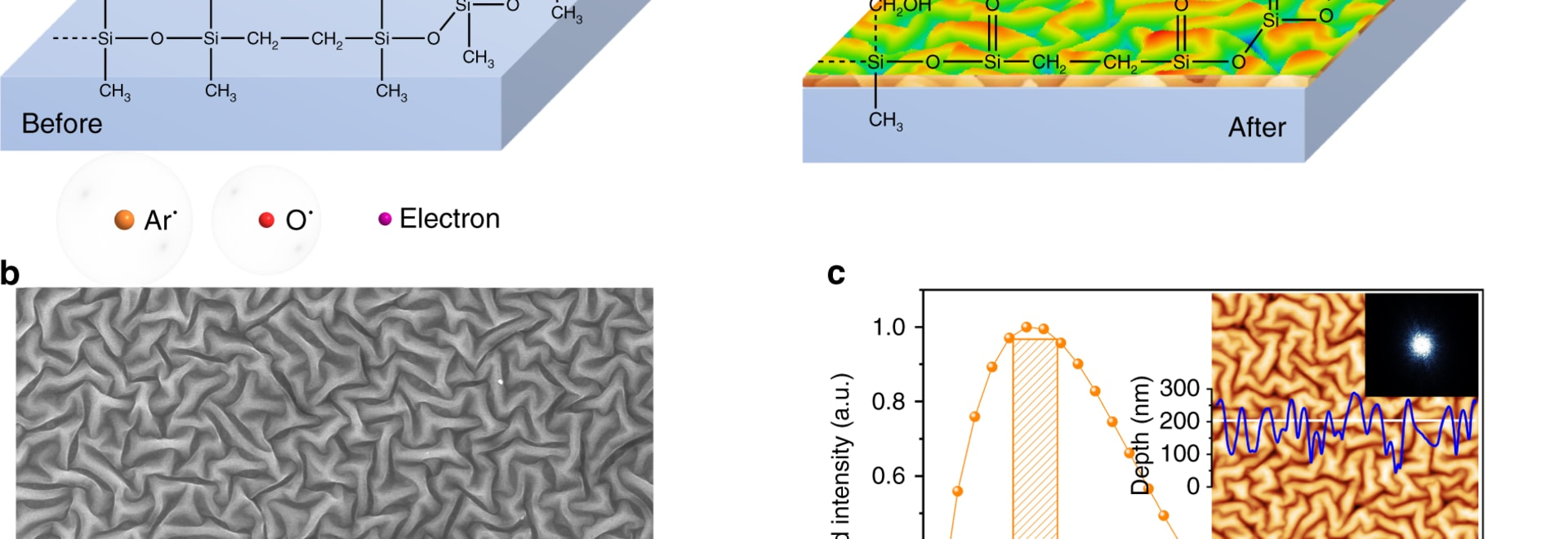 Schematic illustrations of RIE-induced nanostructures. a Thermally pretreated PDMS is modified by RIE with Ar, O2 ions and electrons via physical bombardments and chemical reactions. After the RIE ...