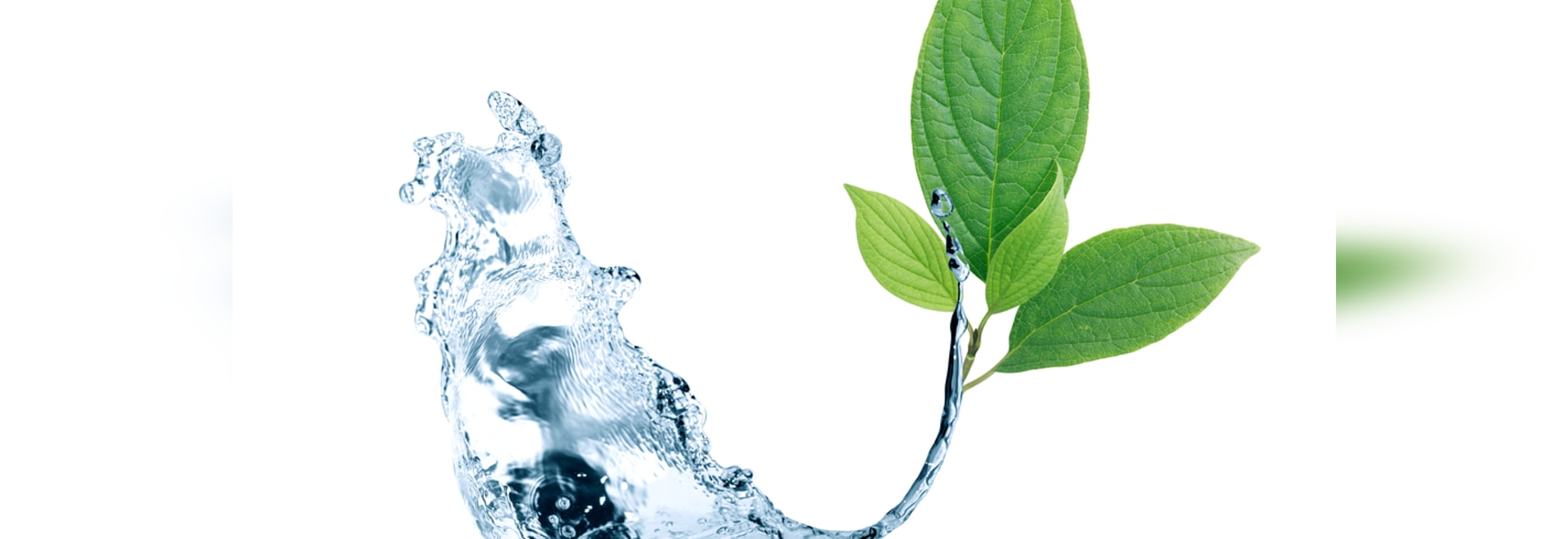SPRAY SYSTEMS FOR ECOLOGY AND WATER TREATMENT