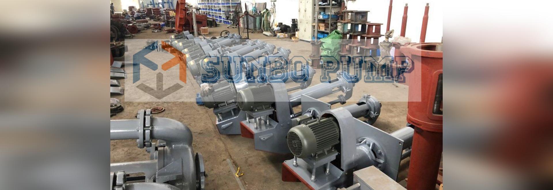 Sump Vertical pump