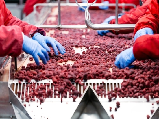 How To Avoid Being The Next Food Safety Scandal