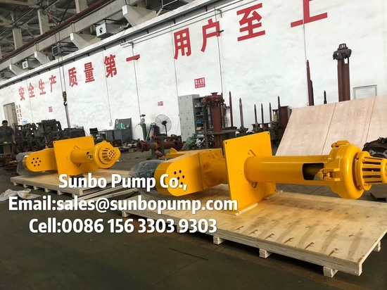 Vertical pump with motor