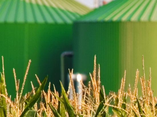 Oxygen generator for biogas plant