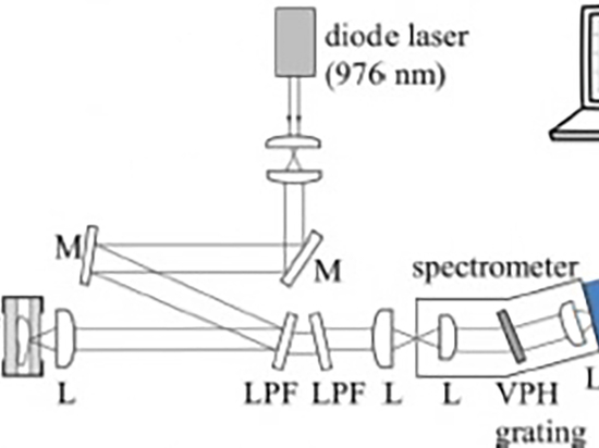 Raman Spectroscopy Of Pigmented Human Tissue In The Shortwave Infrared