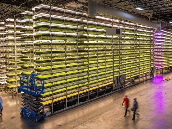AeroFarms says it is the commercial leader in fully-controlled indoor vertical farming with 390 times greater productivity per square foot annually compared to traditional field farming while using...
