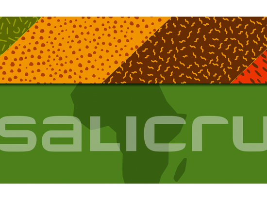 Creation of the division Salicru Africa