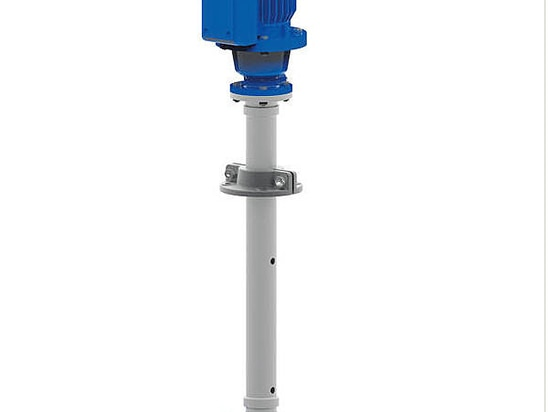Vertical pump in stationary or transportable wet installation