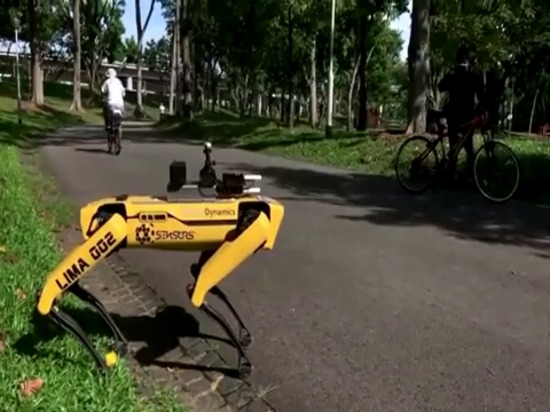 Singapore robot enforces safe distancing among park-goers