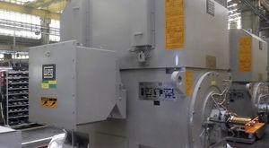 中電圧モーター / 三相 / 非同期 / 産業用